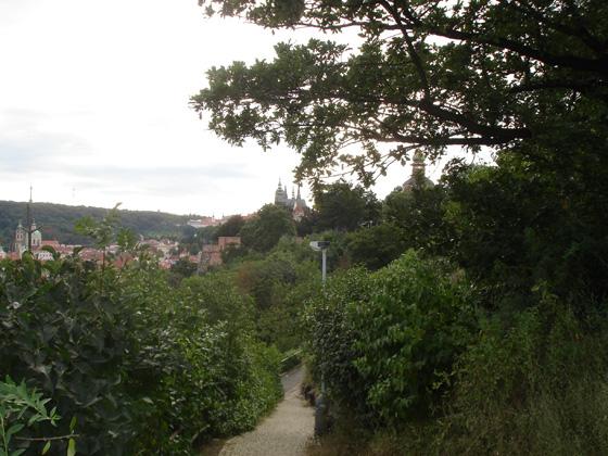Вид на Пражский Град сквозь Летенские сады