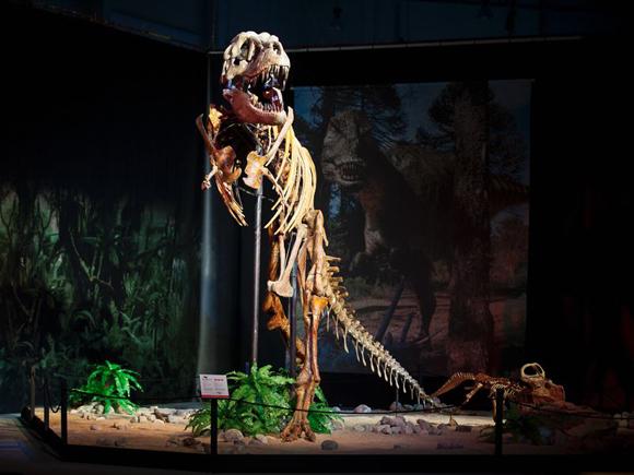 В Праге покажут динозавров